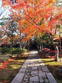 諸戸氏庭園の紅葉