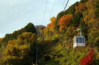 八幡山ロープウェーの紅葉