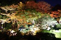 旧竹林院庭園の紅葉