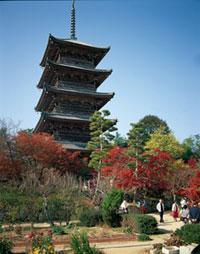備中国分寺の紅葉
