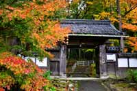 高源寺(滋賀県)の紅葉