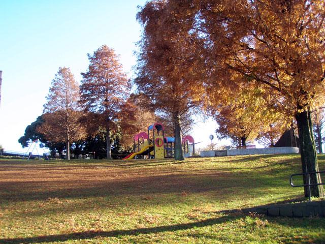 車場 駐 森林 根岸 公園