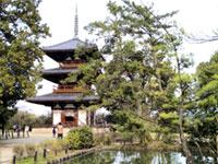 法起寺の初詣