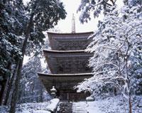 明通寺の初詣
