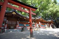 杭全神社の初詣