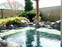 Odoriko Onsen Kaikan (Hot Sping Facility)