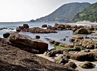 今井浜温泉