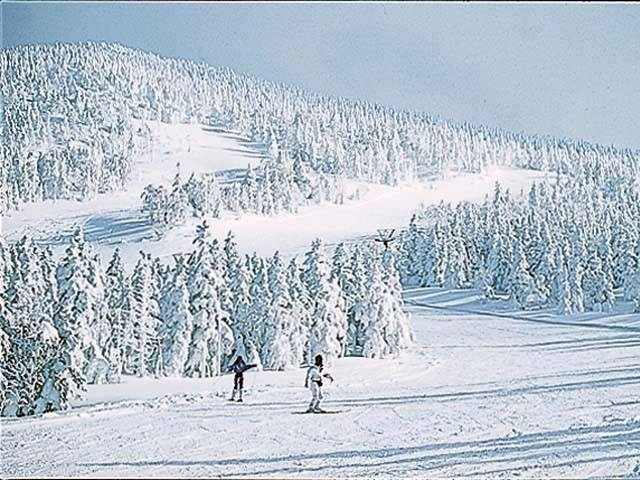 スキー 場 台 天元