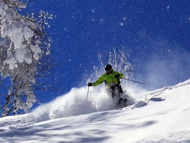 場 熊 スキー の 湯
