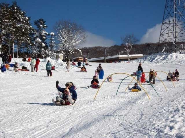 高原 場 ひるがの スキー