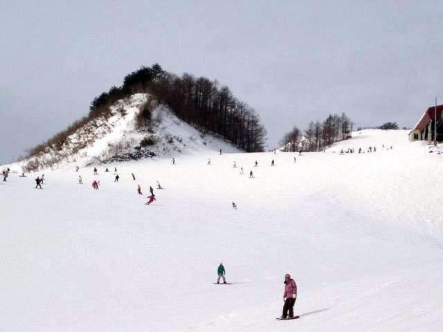 スキー 場 バレイ スカイ