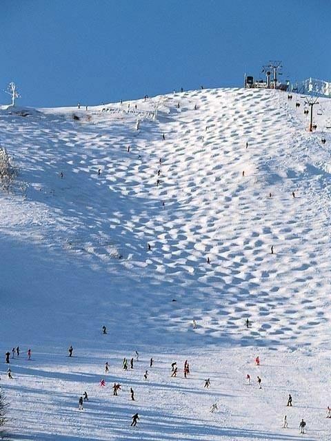 北 天気 場 ハチ スキー