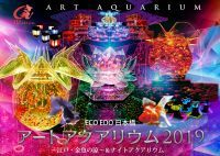 アートアクアリウム~江戸・金魚の涼~&ナイトアクアリウム