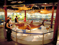 Sea and Life Museum