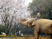 横浜市立金沢動物園